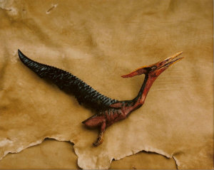 carved-pteradactyl.jpg