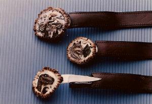 carved-stag-buckle-knife.jpg